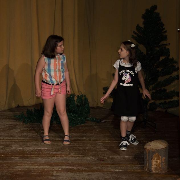 Cursuri de actorie cu Teodora