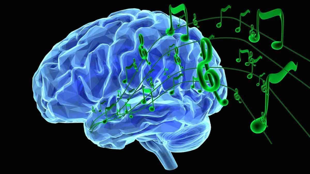 Muzica si creierul uman partea 1